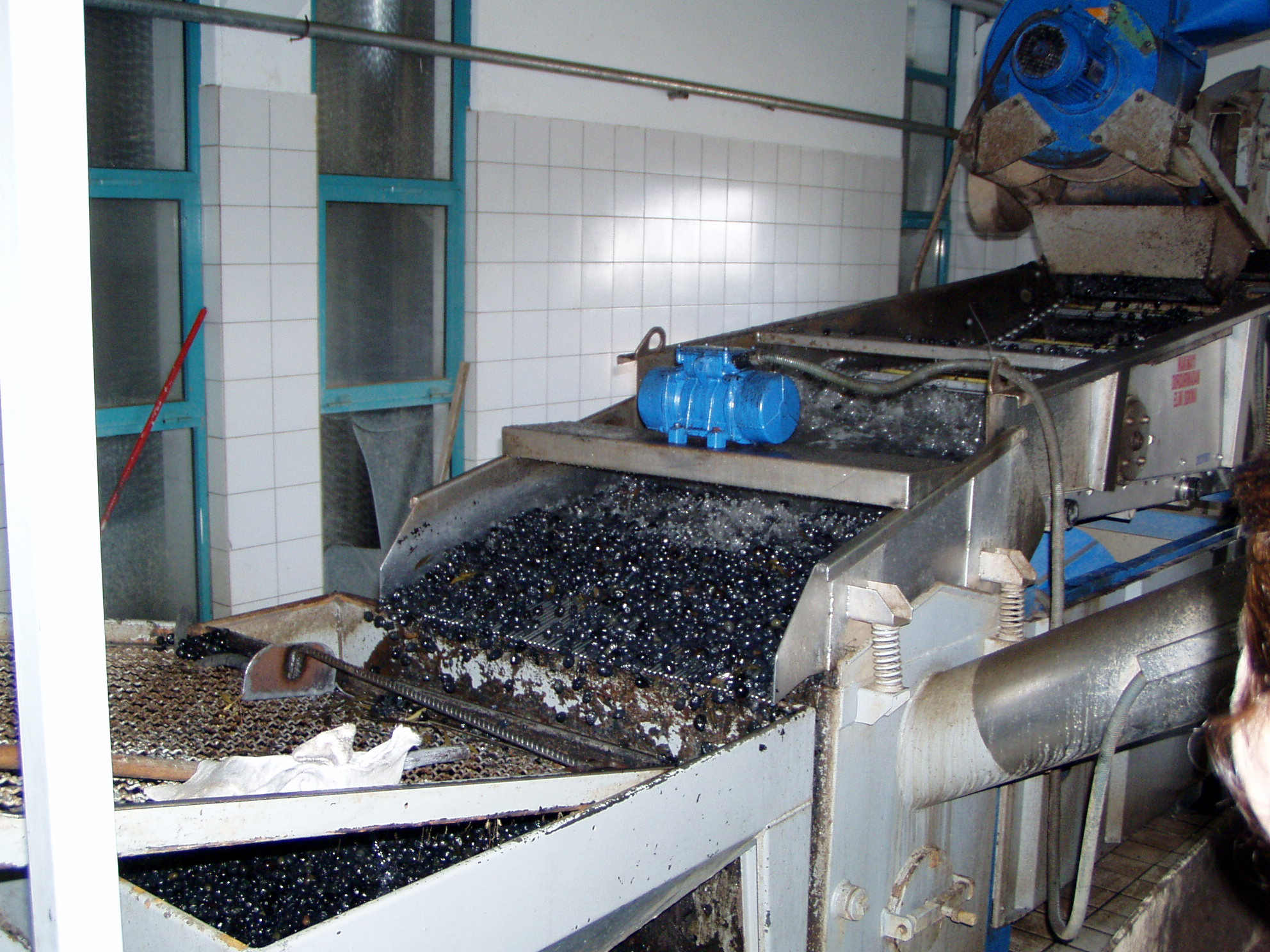 Ozgun Olive Factory Ayvalik Turkey