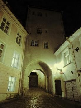 TallinnEstoniaCobblestoneStreetNight