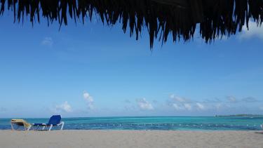 bahamachairs